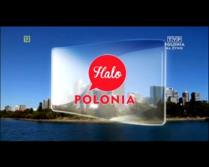 Halo Polonia Praca w Holandii 12
