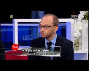Halo Polonia Praca w Holandii 15