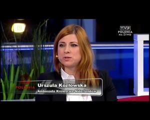 Halo Polonia Praca w Holandii 18